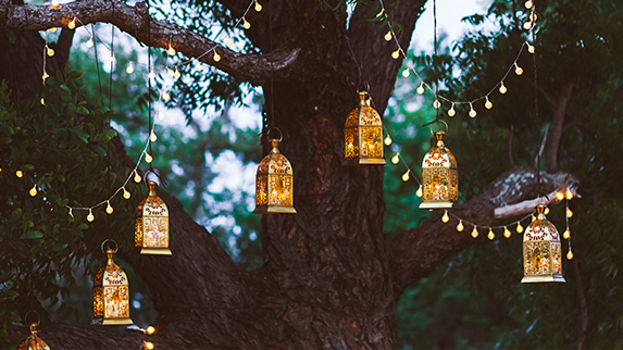 HART Holistic Support lanterns ceremonies